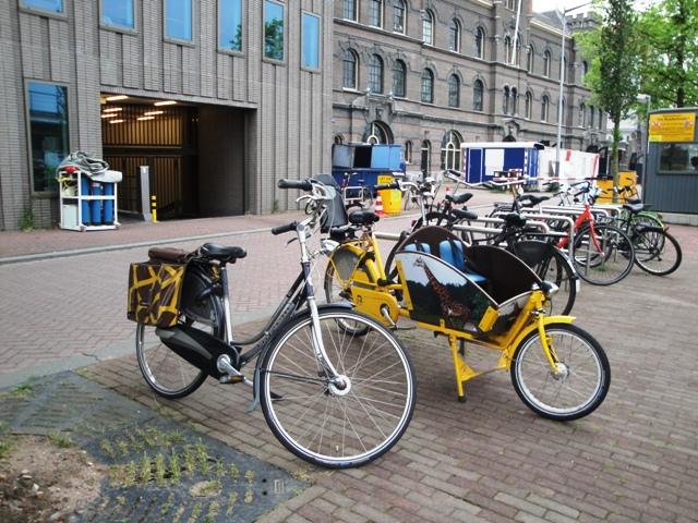 Bicicletas de girafa